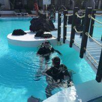 PADI diving courses corralejo fuerteventura