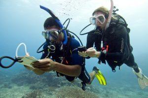 PADI Navigation Diving Corralejo fuerteventura Abyss Fuerteventura